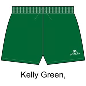 classic_shorts_kelly_green