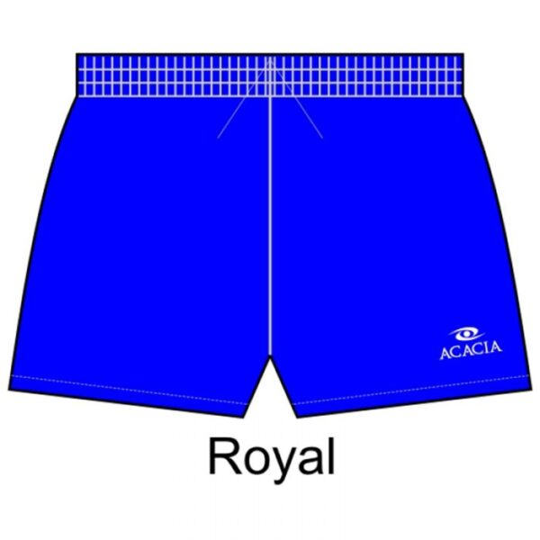 classic_shorts_royal